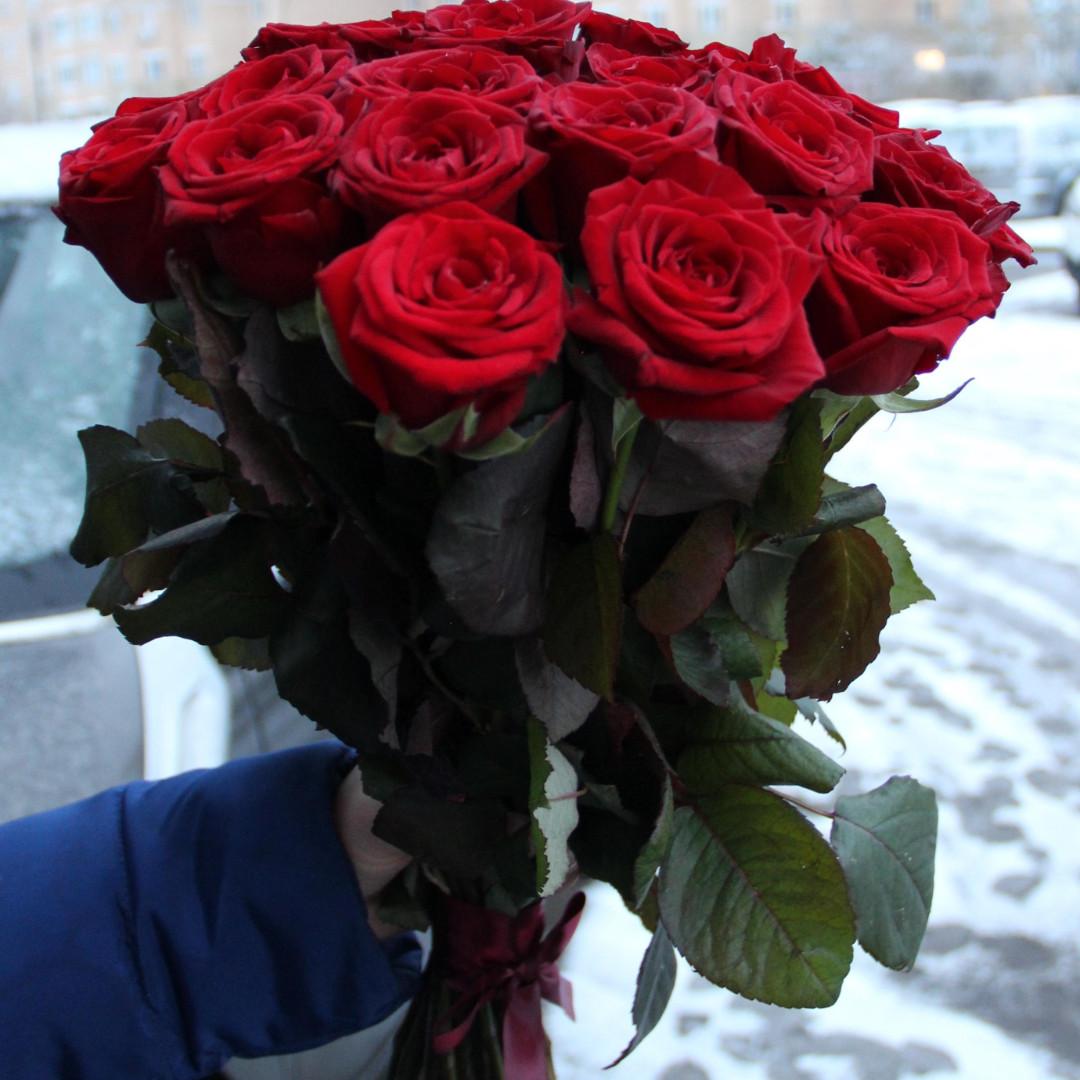 подарили розу картинки красном